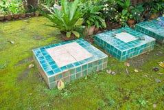 The green stone block walk path in the backyard.  Royalty Free Stock Photo