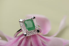 Green stone ring on a flower Stock Photography