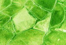 Green stone wall Royalty Free Stock Photo