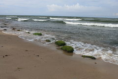 Green stones on the beach, Baltic Sea, Hel, Poland Stock Photo