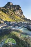Green stones on the Lofoten Island coastline, Norway Stock Photos