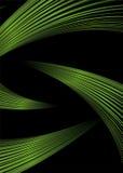 green strand ελεύθερη απεικόνιση δικαιώματος
