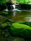 Green Stream. Moss covered rocks and waterfall Royalty Free Stock Photography