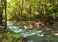 Green stream. A photo of natural green stream stock image