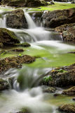 Green stream. Silky water cascading over green moss-covered Stock Images