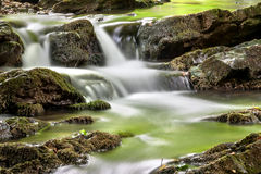 Green stream. Silky water cascading over green moss-covered Royalty Free Stock Image
