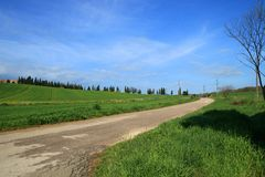 Green street. This is street in the green. This photo has been taken in Toscana, Italy. The blue sky and the green field make this image very coloured Stock Photo