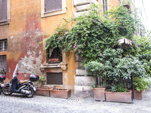 Green street corner in Rome Stock Photos