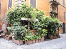 Green street corner in Rome Royalty Free Stock Photography