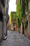 Green streets of ancient Rome. Italy, narrow streets paved with stones Royalty Free Stock Images