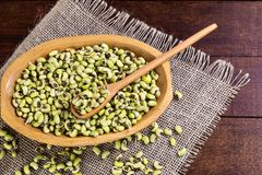 Green String Bean - typical northeastern food with dende oil.  stock photography