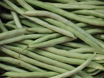 Green string beans Stock Photography