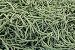 Green or string beans. A pile or bunch of green or string beans, freshly picked or harvested Stock Photo