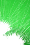 Green String Web Background Royalty Free Stock Photos