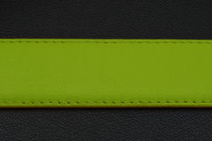 Green stripe on black background. Belt from skin or leather. Belt in green color Stock Photo