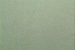 Green striped fabric Stock Image