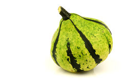 Green striped ornamental pumpkin Stock Photography