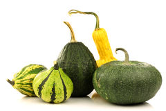 Green, striped and yellow ornamental pumpkins Stock Photography