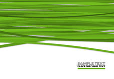 Green stripes. Abstract background illustration Royalty Free Stock Image