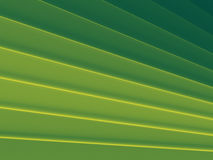 Green stripes image works good Stock Photos