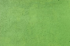 Green Stucco Royalty Free Stock Image