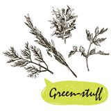 Green-stuff sketches. harvesting Royalty Free Stock Photos