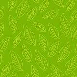 Green stylized leaf seamless pattern. Vector illustration, leaf background pattern. Template for wallpapers, site Royalty Free Stock Photography