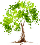 Green stylized vector tree Royalty Free Stock Image