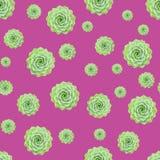 Green Succulent Plant Pattern Pink Background stock illustration