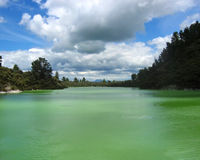 Green sulphur lake Rotorua Royalty Free Stock Photo