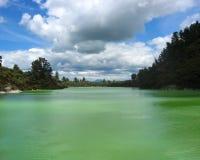 Green sulphur lake Rotorua. Scenic view of green sulphur lake pictured at Rotorua, North Island, New Zealand Royalty Free Stock Photo