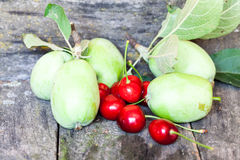 Green, summer apples and cherries Stock Photos