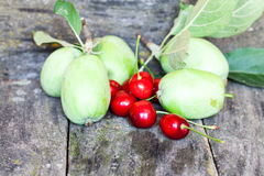 Green, summer apples and cherries Royalty Free Stock Images