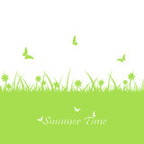 Green summer background Royalty Free Stock Photos