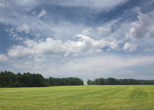 Green summer landscape 2. Green summer landscape with dramatic sky Royalty Free Stock Photo