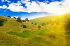 Green summer landscape Royalty Free Stock Photos