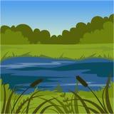 Green summer landscape with lake, nature background vector illustration Stock Images