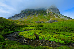 Green summer landscape, rock hill in the clouds, Svalbard, Norway Royalty Free Stock Photos