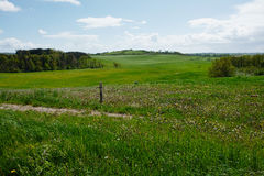 Green summer landscape scenic view image Royalty Free Stock Photography