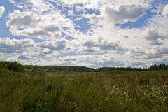 Green summer meadow and bright clouds. Royalty Free Stock Images