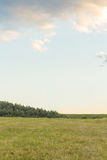 Green summer meadow landscape with blue sky. Vertical shot Royalty Free Stock Images