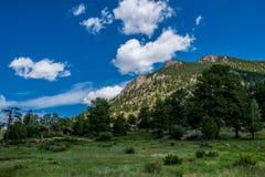 Green summer mountain valley, Rocky Mountain National Park. Colorado. Nature of North America, USA. Wild primeval nature of the Rocky Mountains in Colorado, USA royalty free stock photos