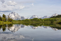 Green Summer Reflections in Grand Teton National P Royalty Free Stock Images