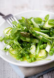 Green summer salad Stock Photos