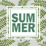 Green summer tropical background with exotic palm leaves and plants. floral. Green summer tropical background with exotic palm leaves and plants. Vector floral Stock Images