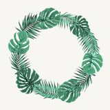 Green summer tropical leaves border frame wreath Royalty Free Stock Image