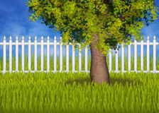 Green summergarden with fence and tree Royalty Free Stock Images