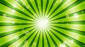 Green Sun Burst Flowers. Retro sunburst Background with abstract flower particles and light rays. 8K Ultra HD Resolution at 300dpi Stock Photography