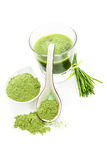 Green superfood. Royalty Free Stock Photo