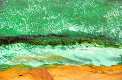 Green surf on sand seaweed waves Stock Images
